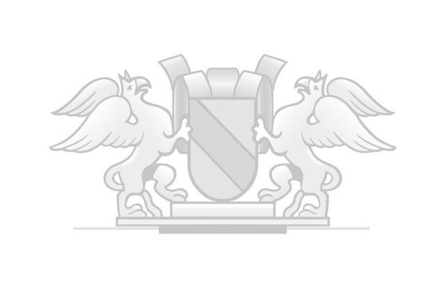 55 Jahre Elysée-Vertrag: Großartige Errungenschaft