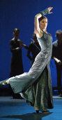 Den Flamenco erneuern