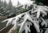 Der erste Schnee bringt den Verkehr durcheinander
