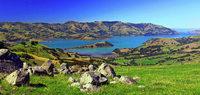 Der spanische Jakobsweg und Neuseeland