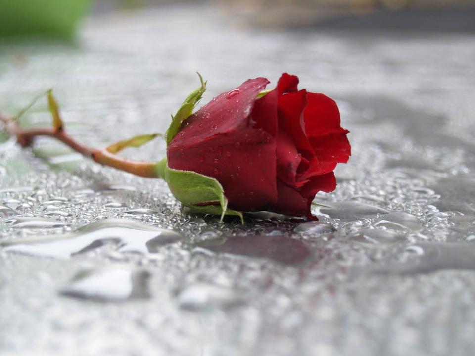 Trauer ist etwas sehr Privates. Dennoc...n Zeitgenossen Geschäfte damit machen.  | Foto: fotolia