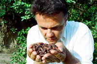 Im Schokoladenparadies