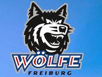 Live-Blog: Die Wölfe zu Gast in Bietigheim