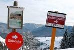Fotos: Kaltwasser-Abfahrt am Schauinsland