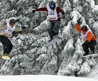 Skicross – bergab meterhoch hinaus