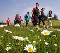 Mit der BZ in Breitnau: Auf zum Nordic Walking