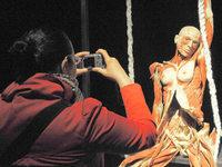 Fotos: Körperwelten-Ausstellung in Berlin
