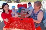 Grenzach-Wyhlen: Spargel- und Erdbeerfest