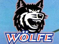 Steht die Zukunft der Wölfe Freiburg auf der Kippe?