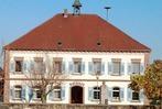 Wahl 2009: Die Kandidaten der SPD Ringsheim