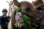Fotos: Die schönsten Bilder vom Eulogiritt