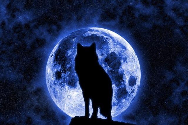 Der Magier im Mond