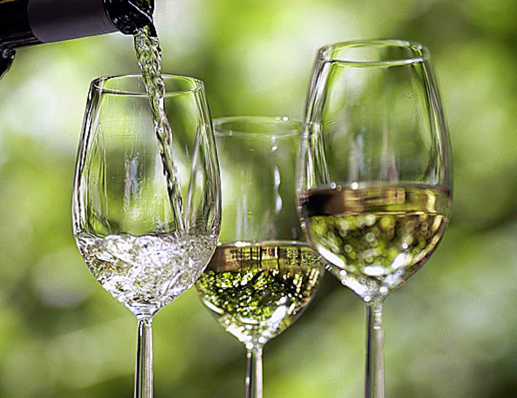 Vin Vino Wine App Wine Bottle Miniature Fairy Garden Home