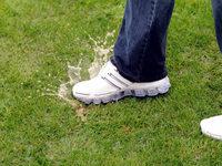 Testspiel des SC Freiburg abgesagt