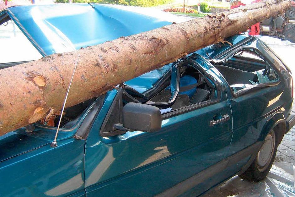 Zum Glück nur simuliert: Ein Baumstamm richtet großen Schaden an (Foto: Margit Brodmann)