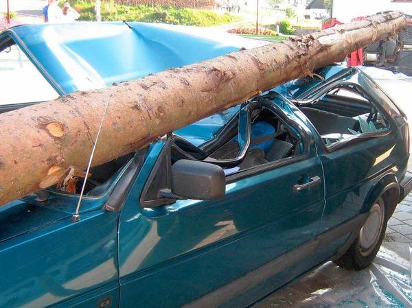 Zum Gl�ck nur simuliert: Ein Baumstamm richtet gro�en Schaden an