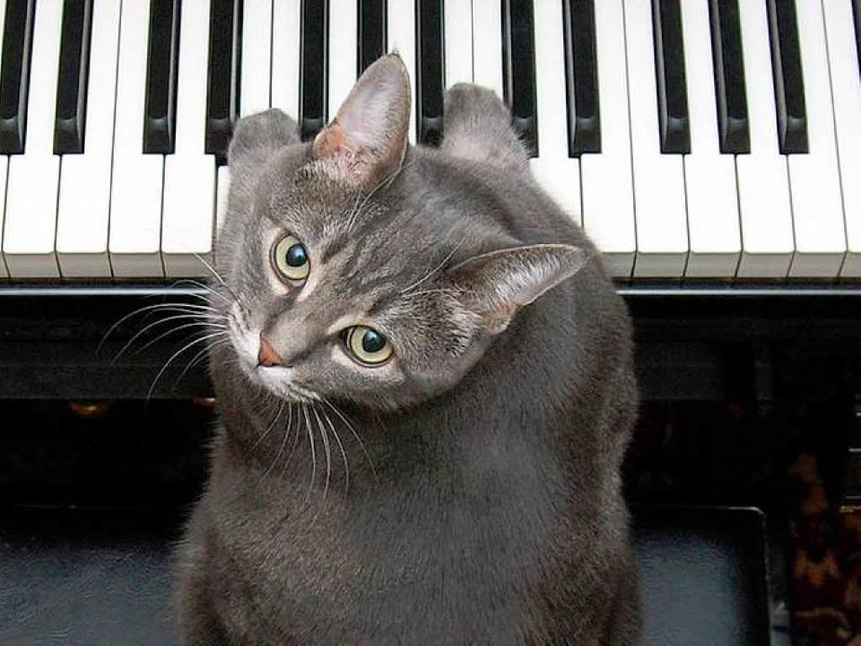 Nora am Klavier    Foto: Burnell Yow!