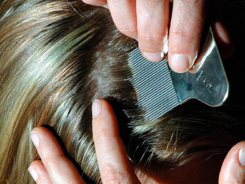 Blondierte haare lause