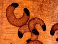 Schwarzwälder Schokogipfel