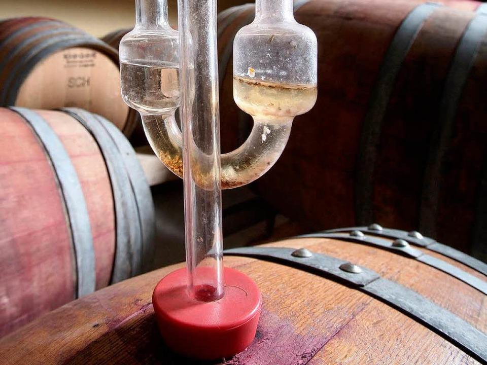 Ein Gärspund ist auf einem Barrique-Ho...s: Die Feinheiten der Weinherstellung.  | Foto: dpa