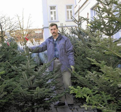 Für christbaumhändler wie reinhold bäc el warten rund 200 bäume