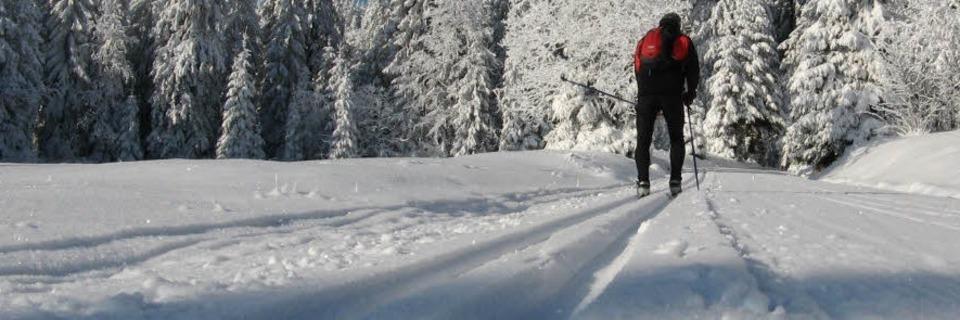 Schneehöhen und Freizeittipps für den Schwarzwald