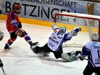 Wölfe Freiburg setzen auf mehr Konkurrenz