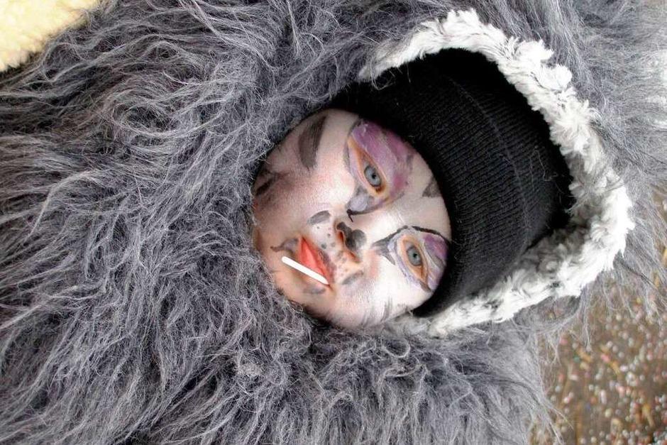 Mit neun Monaten schon ein richtiger Narr: Ein Baby aus den Reihen der Rettiwölfe aus Hausen vor Wald (Foto: Liane Schilling)