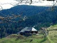 Höfener Hütte: Einkehr über 1000 Metern