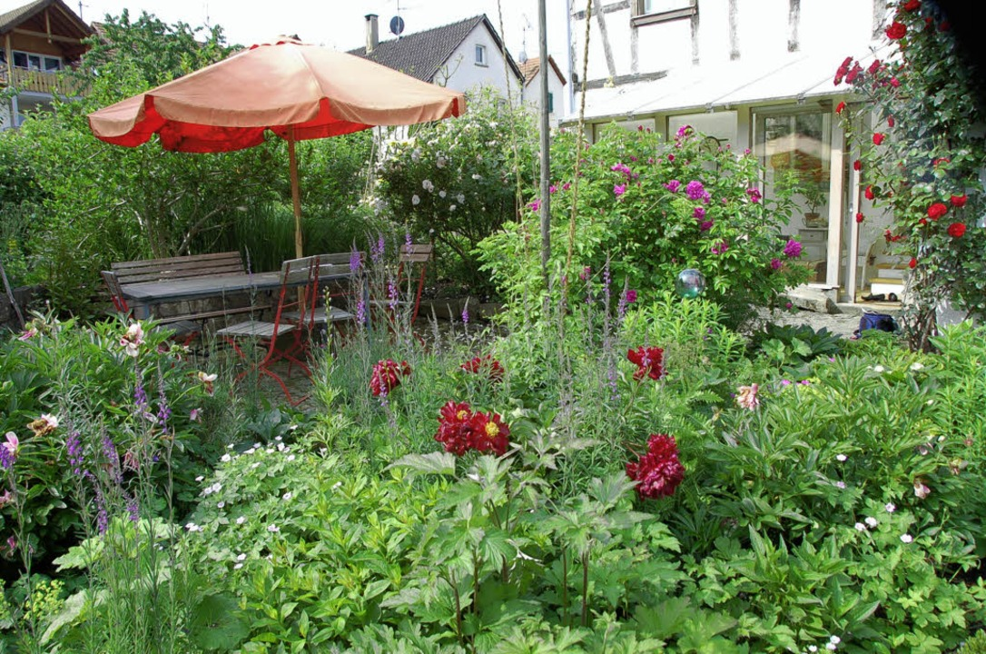 Im Garten an der Schreinergasse in Egr...eiheit zur Selbstentfaltung gelassen.   | Foto: Langelott