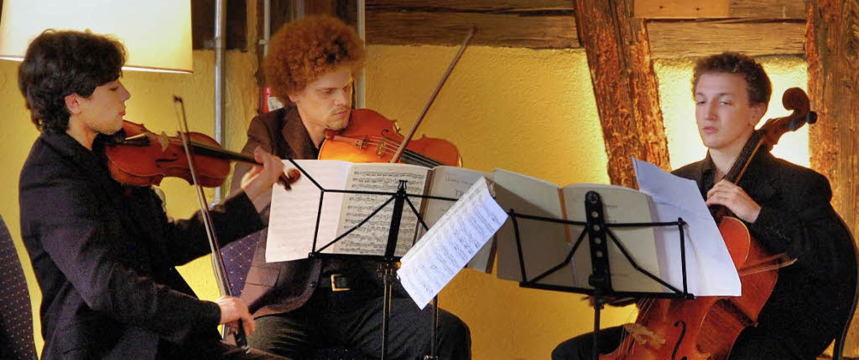 Musik von Ludwig van Beethoven spielte... Weingut Gleichenstein in Oberrotweil.  | Foto: kai kricheldorff