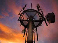 Das gesendete Unheil: Wie B�rgerinitiativen gegen den Mobilfunk k�mpfen