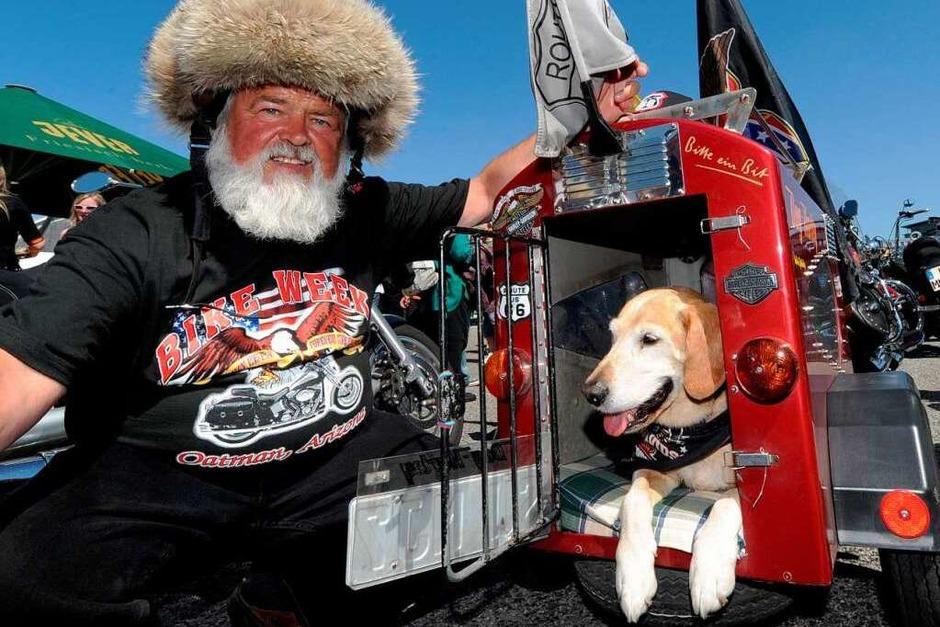 Hunde und Tiere allgemein brauchen an heißen Tagen ein schattiges Plätzchen – Es muss nicht unbedingt eine Harley-Davidson sein. (Foto: dpa)