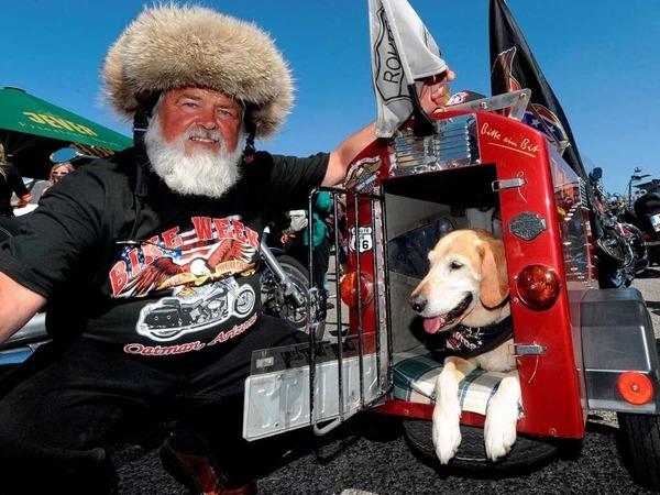Hunde und Tiere allgemein brauchen an heißen Tagen ein schattiges Plätzchen - Es muss nicht unbedingt eine Harley-Davidson sein.