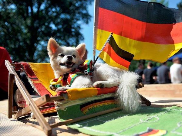 An hei�en Tagen sollten Hunde ihren Liegeplatz selbst w�hlen k�nnen – falls es ihnen in der Sonne einmal zu hei� werden sollte.