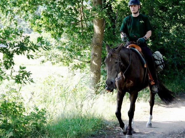 Pferdefreunde sollten ihre Ausritte an hei�en Tagen in die Morgen- und Abendstunden verlegen. Auf einen wilden Galopp sollten sie verzichten.