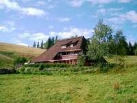 Hinterwaldkopfhütte: Die Stille der Almweiden