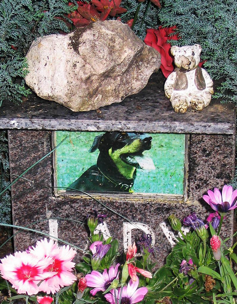 wo hund und katz ordentlich begraben werden s dwest badische zeitung. Black Bedroom Furniture Sets. Home Design Ideas