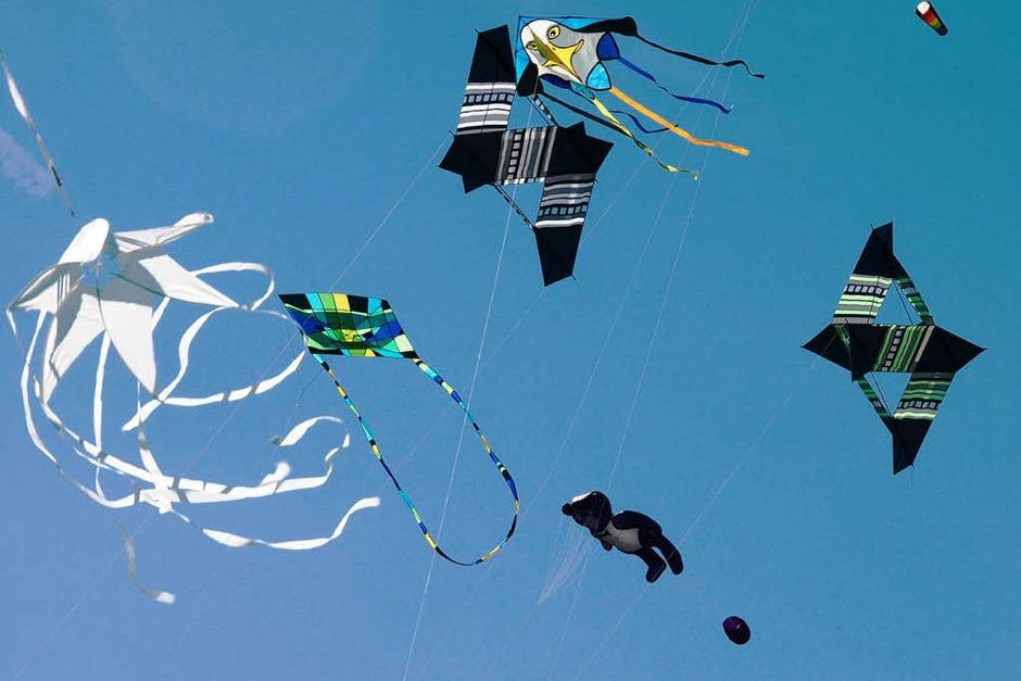 Drachen in allen erdenklichen Farben und Motivvarianten waren am strahlend blauen Himmel über dem Segelflugplatz Hütten zu sehen (Foto: Karin Stöckl-Steinebrunner)