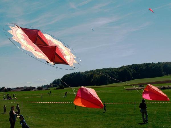 Drachen in allen erdenklichen Farben und Motivvarianten waren am strahlend blauen Himmel über dem Segelflugplatz Hütten zu sehen
