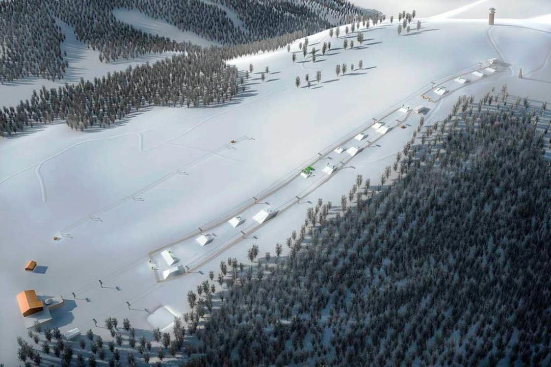 Ein neuer Schneepark am Seebuck zwisch...Attraktivität des Skigebiets sichern.     Foto: Gemeinde Feldberg
