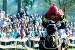 Fotos: Pferderennen in Meißenheim