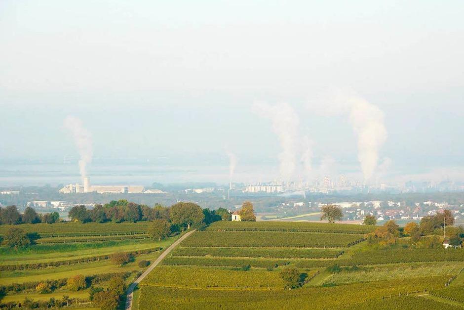 Blick über den Humberg auf die Rheinebene (Foto: Katharina Meyer)