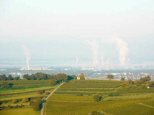Blick über den Humberg auf die Rheinebene