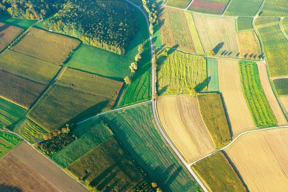 Markgräflerland von oben (Foto: Katharina Meyer)