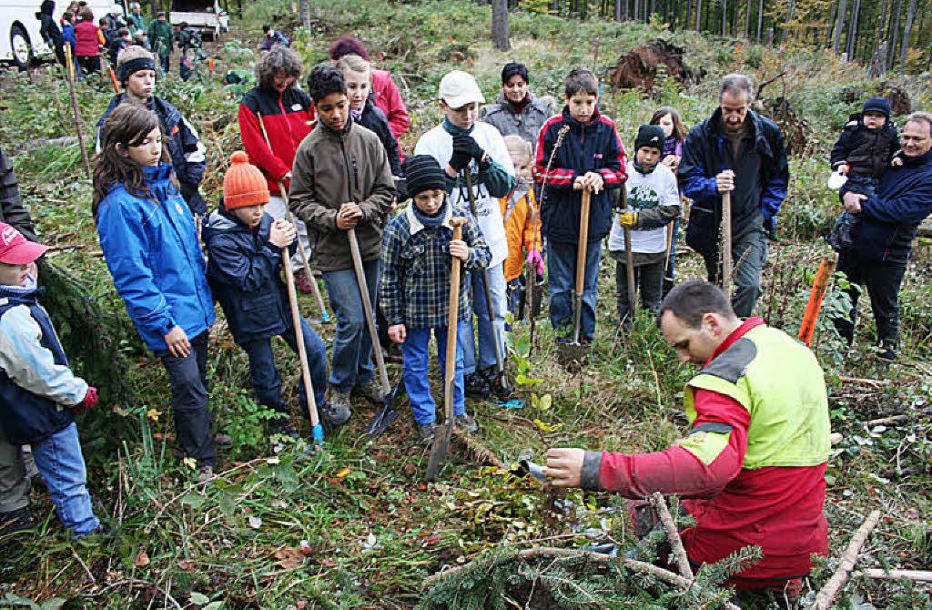 Forstwirtschaftsmeister niko zink zeigt den helfern wie der setzling
