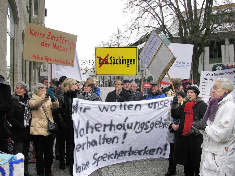 300 Demonstranten gegen Atdorf in Bad ...a Schwarzelühr-Sutter (rechts oben).    | Foto: michael Gottstein