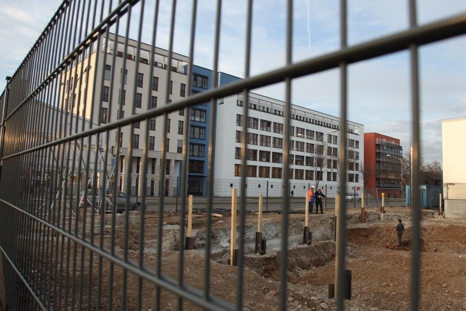 Der Fundort an der Kreuzung Berliner Allee und Elsässer Straße (Foto: Dominic Rock)