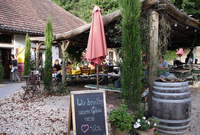Martinshöfe: Mammutbäume und Martinsgänse