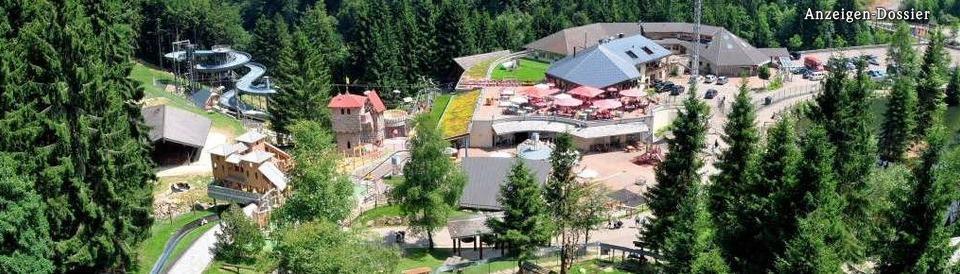 Steinwasen-Park in Oberried